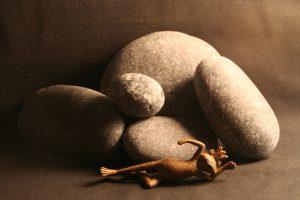 Stilleben mit Frosch und Steinen vor schwarzem Hintergrund